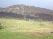 highland holiday 061