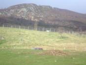 highland holiday 062